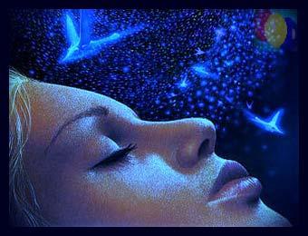 толкование снов котята